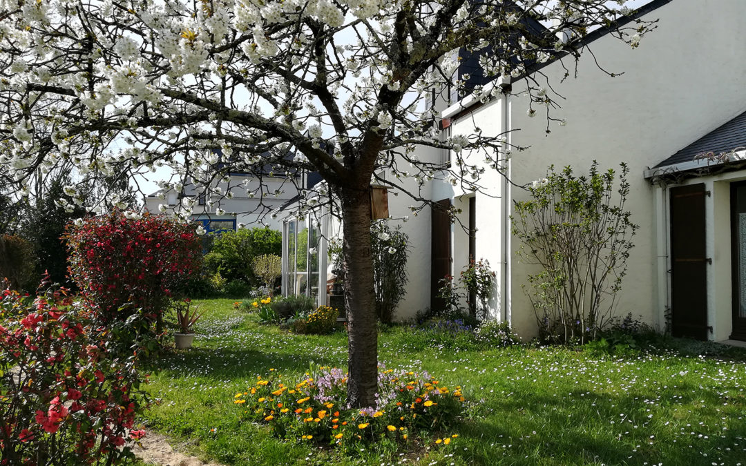Un logement en habitat participatif à vendre !